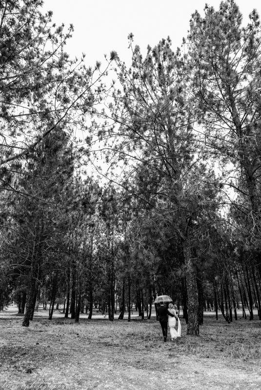 Bride, Groom, Rain, Umbrella, Biamor Photography, Rustic, Documentary, Fine Art Wedding Photography