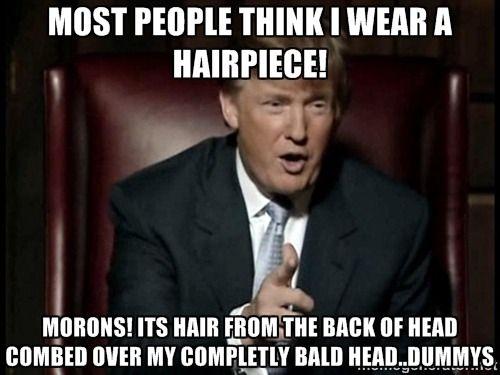 die besten 17 ideen zu donald trump hair auf pinterest   memes
