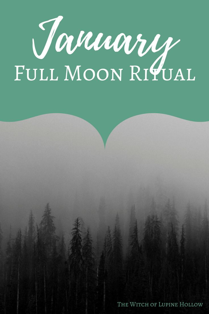 "One of the more popular names for the January Full Moon is ""Wolf Moon"", a dramatic and steadfast sort of name. Personally, though, I prefer the more innocuous ""Quiet Moon"", …"