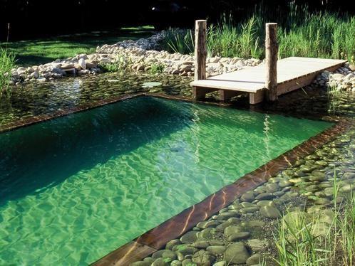 Piscines naturelle - Le saviez-vous ? Le prix de ces piscine est élevé : 35 000 euros en moyenne.