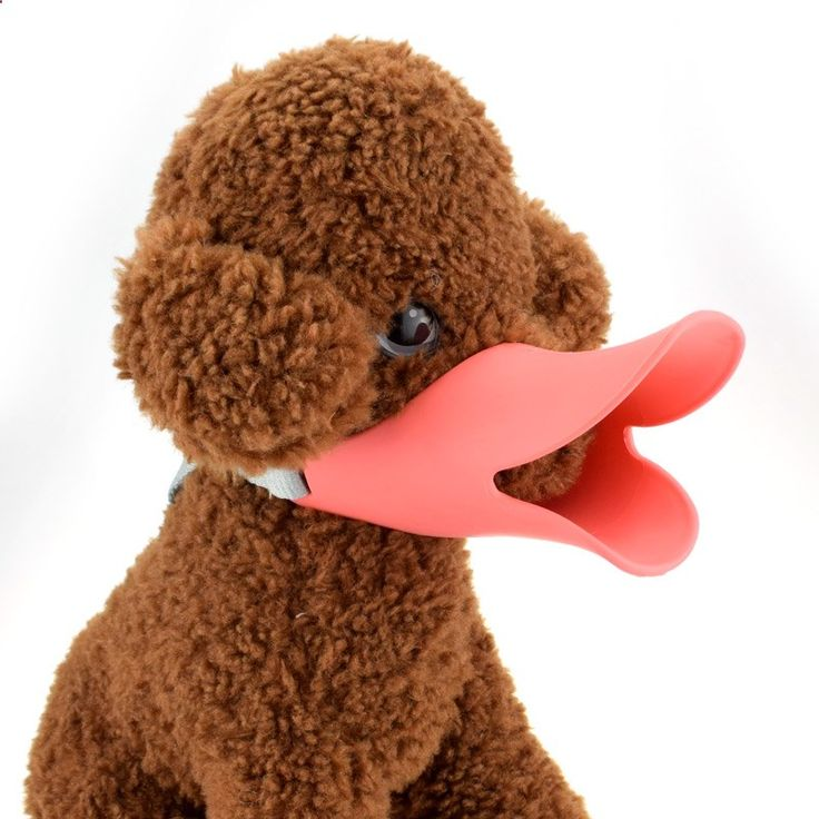 Pets silicone duckbill sets Teddy dog muzzle hardcover Anti-bite anti-called Gouzui cover