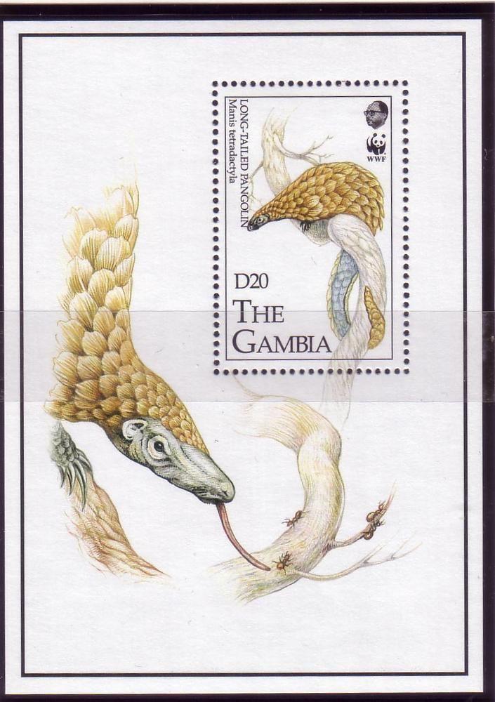 Gambia Pangoline Schuppentier Block WWF 1993  | eBay