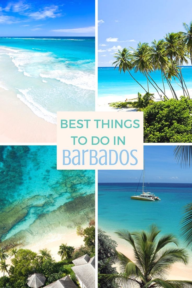 Best things to do in beautiful Barbados | Travel | Barbados travel