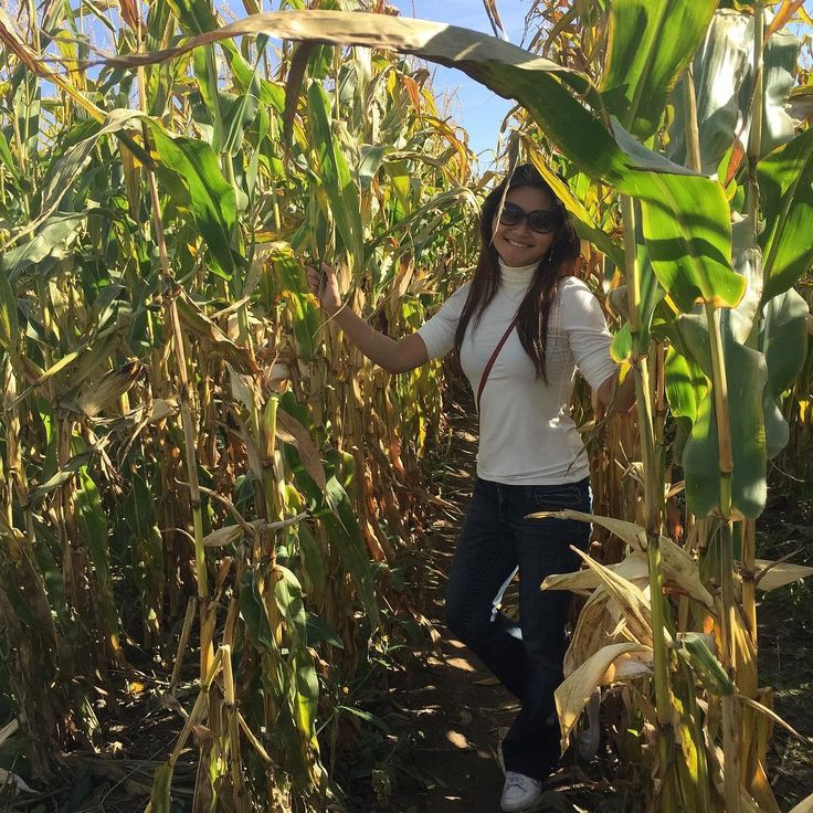 Gambader dans un champs de blé // Frolicking in a field of wheat @tourime.iledorleans 🌾 . Top @HM, Jeans @Winners, Glasses @MarcJacobs, Shoes @Nike, Crossbag @Fossil #acceptmyself #moreconfident #labyrinthe #champsdeblé #fermeroberge #fieldofwheat #iledorleans #nofilter #nomodification #originalpicture #stoptryingtofitin #sunshine #acceptingmyself