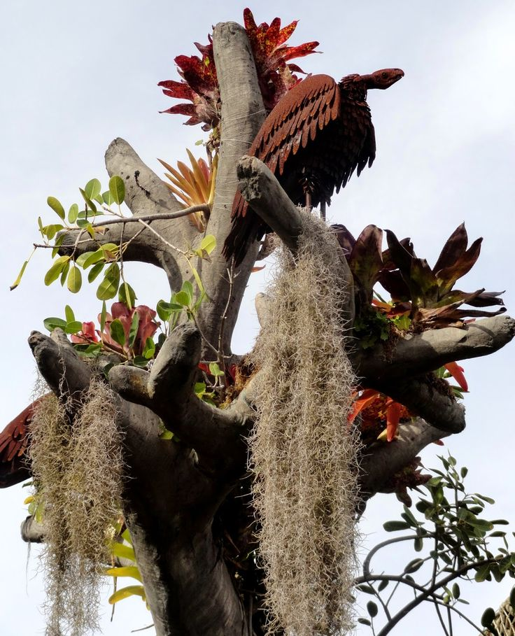 Rusty Vulture/condor Sculptures On An Enormous Bromeliad Tree At The San  Diego Botanic Garden