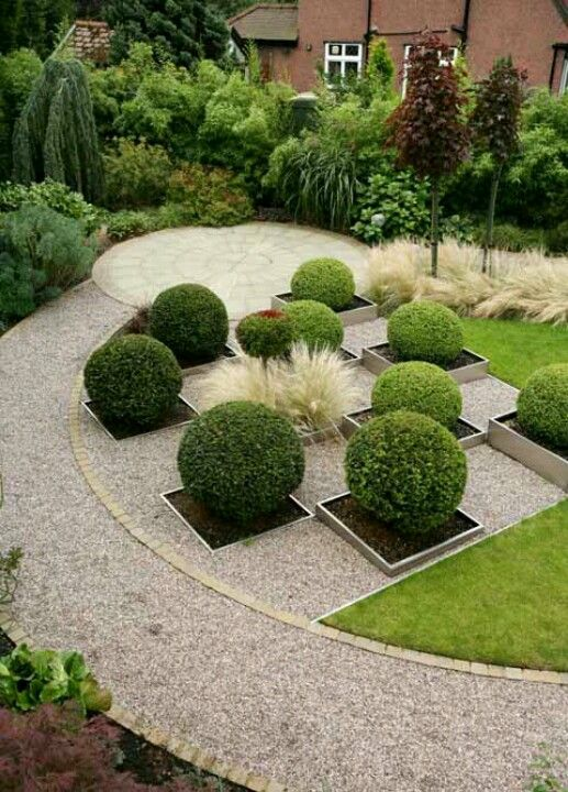 Great textural contrast between gravel box balls & grasses in this garden