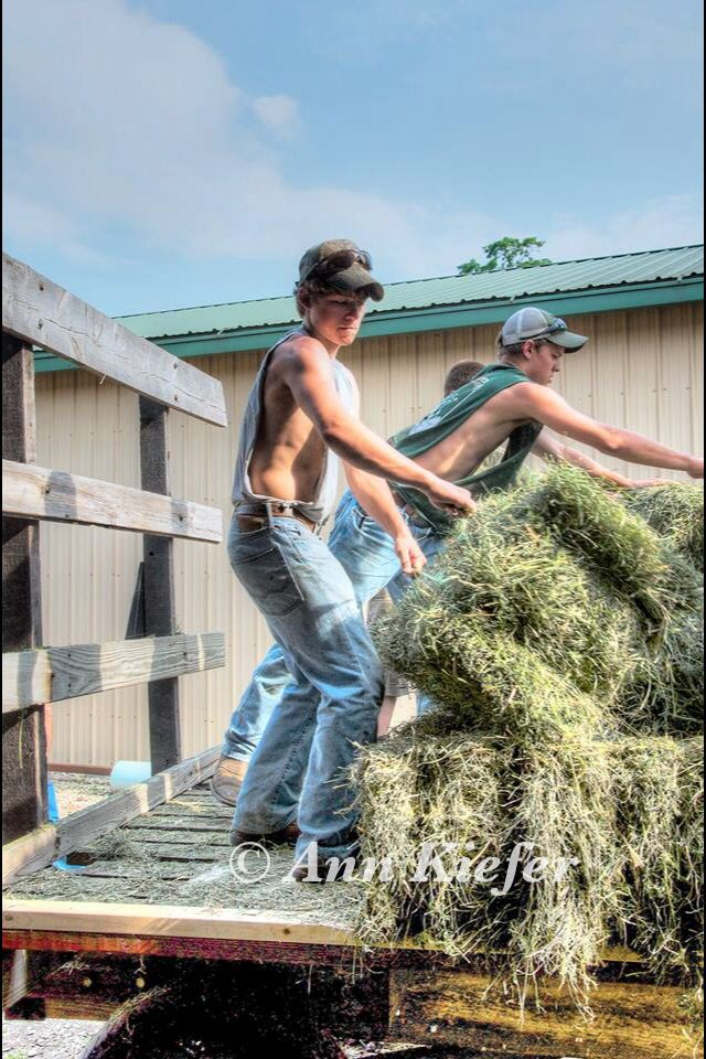 Country Boys  Farm boys