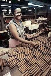 Cuban Cigar Brands | Cuban Cigars History