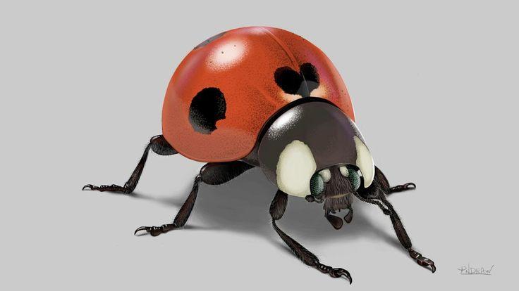 Drawing the LadyBug insect speedpaint (1080p HQ). Desenhanho uma joaninha em fullhd 1080p desenhando em full hd alta qualidade.