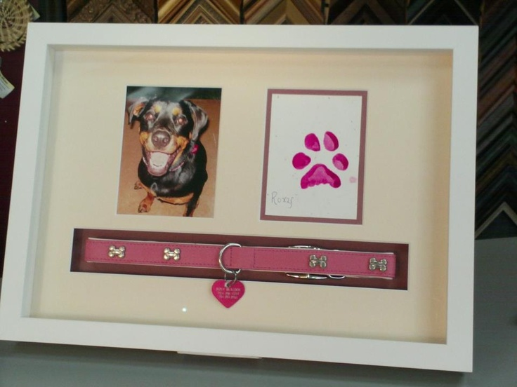 82 best Custom Framed Pets - FastFrame of LoDo - Denver, CO images ...