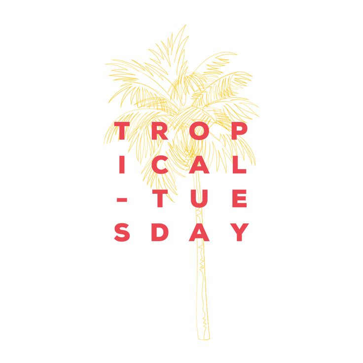 Tropical Tuesday - minimal palm illustration and typography branding
