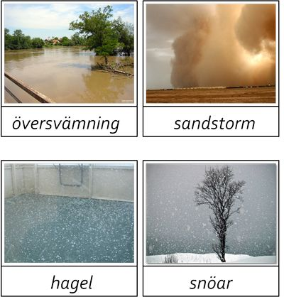 Väder, kort i 3 delar -beställning
