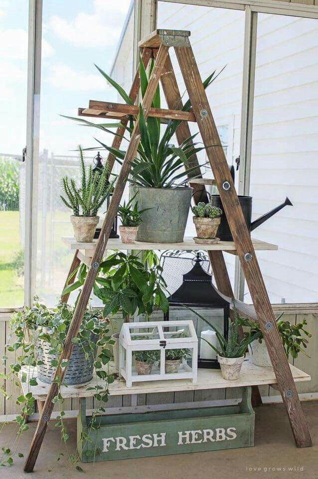 DIY w/ Old Ladder. | For the Backyard Deck or Patio, for HERBS & SMALL PLANTS, if you have no place to garden. A