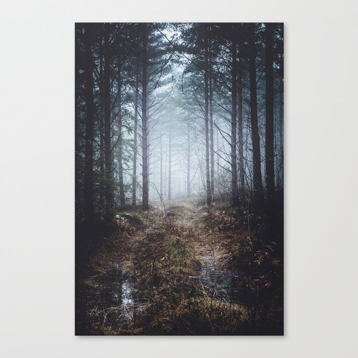 No more roads Canvas Print by HappyMelvin. #forests #nature #photo #wallart #canvasprint