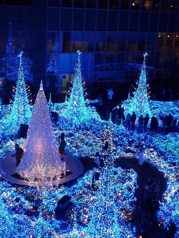 Christmas trees in Caretta-Shiodome, Tokyo, Japan