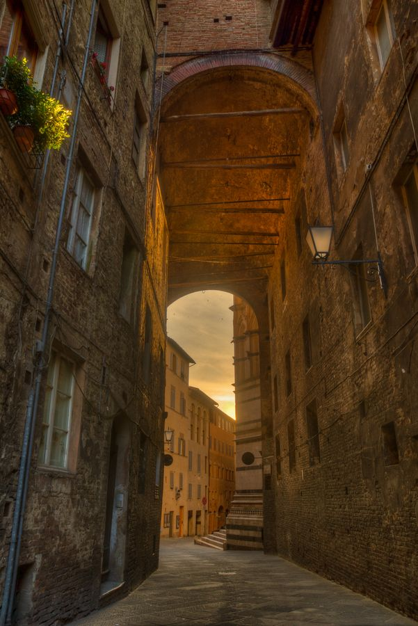 A Morning in Siena, province of Siena, Tuscany region Italy
