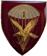 1 Parachute Battalion (Ex Alto Vincimus)[1] is the only full-time paratroop unit of the South African Army. It was established on 1 April 1961 with the formation of the Parachute Battalion. After 1998 this unit was renamed to Parachute Training Centre. It was the first battalion within 44 Parachute Brigade until 1999 when the brigade was downsized to 44 Parachute Regiment