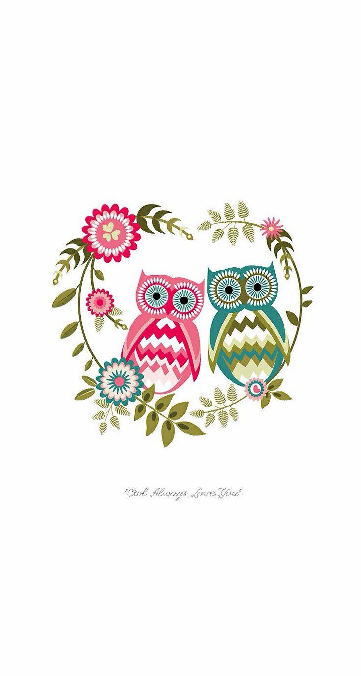 Amazing Wallpaper Home Screen Owl - f6365a55ed539a09cce660b2ceb5eda6--backgrounds-wallpapers-phone-backgrounds  Pictures_74169.jpg