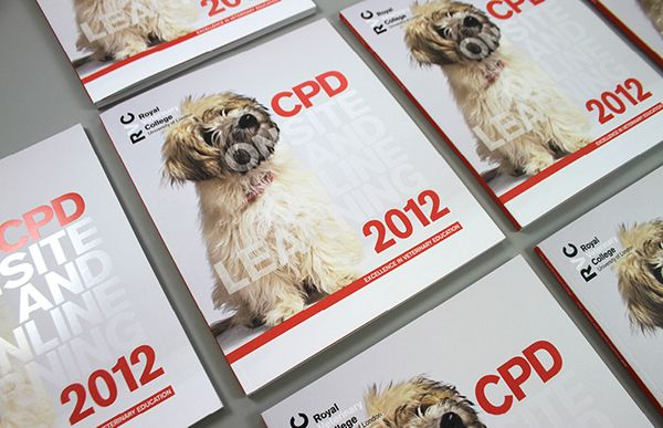 Royal Veterinary College CPD Brochure 2012Identity & BrandingThis brief was to create yet another exciting and engaging brochure for the CPD department of the RVC. Attending and directing the photoshoot, we helped to create the correct style of photogr…
