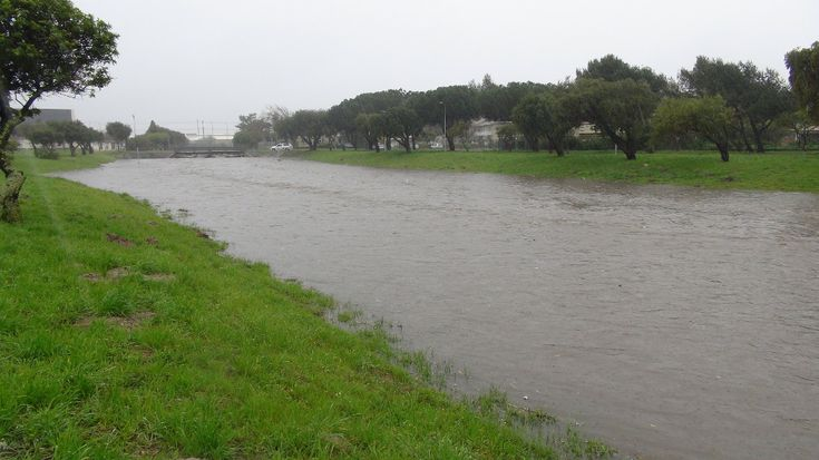 Pinelands canal flooded - 28 August 2013