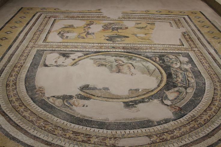 Hatay Archeology Museum - Mosaic