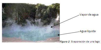 Ya hemos aprendido que el agua como cualquier sustancia puede estar en estado sólido, líquido o gaseoso. Pero, ¿a qué se debe esto?, la respuesta está en la observación del hecho de que cualquier cuerpo, por acción de la temperatura, pasa de un estado a otro.