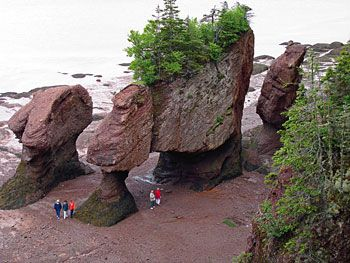 Bay of Fundy Tides, New Brunswick - The site of some of the planet's highest tides, the Hopewell Rocks are one of the great marine wonders of the world. Here you can walk on the ocean floor amid towering four-storey flowerpot rock formations & just a few hours later see them turn into tiny islands.