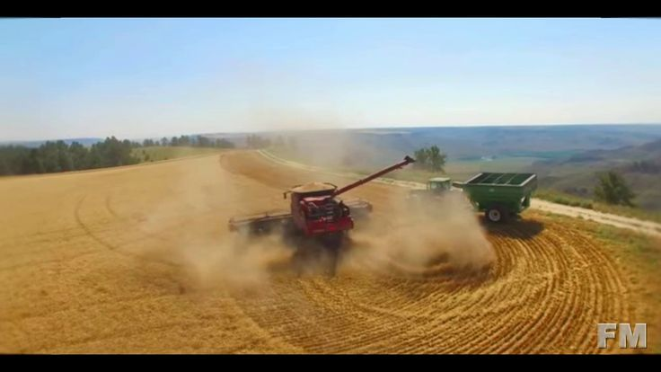 Wheat Harvest Winifred, Montana 2016. !FM!.