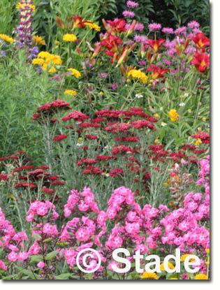 118 besten Garten m Bilder auf Pinterest Gartenideen, Gärtnern - mein garten rtl