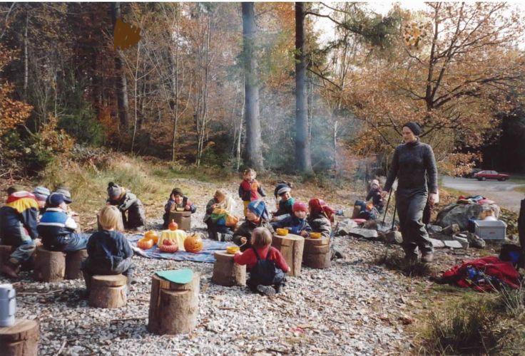 Escola no meio da floresta incentiva crianças a explorarem tudo ao seu redor