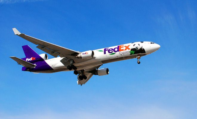 Here is a picture of the Fed Ex's Panda express seconds from touchdown at Toronto' Pearson Airport