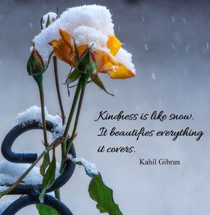 Kindness is like snow,. Kahil Gibran