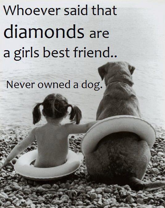 puppy love. So true.