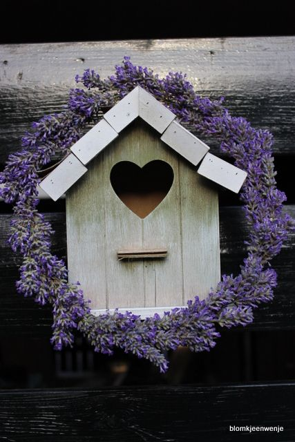 casetta per gli uccelli con coroncina di lavanda (birdhouse with a wreath of lavender)