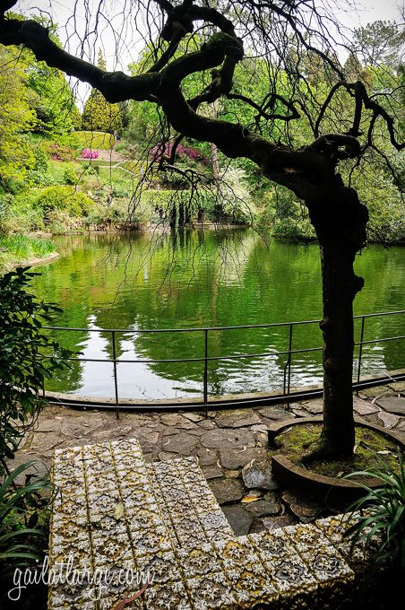 gardens of Serralves (Porto, Portugal)