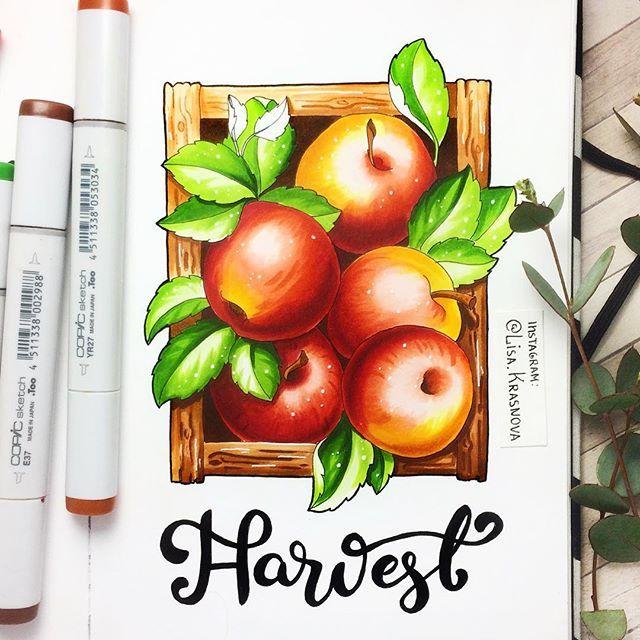 6/8 theme of my drawing challenge- fruits  Пора разбавить грибочки чем-то сладеньким :) 6/8 тема арт-марафона: фрукты. Больше красок в ленту ;)  Рисуем до пятницы, не забываем хэштэг #lk_sketchflashmob