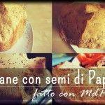 """Pane con MdP ai semi di Papavero: Buono e """"Sofficioso""""!"""