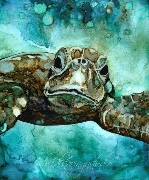 350 best images about paintings shells waterlife on for Turtle fish paint