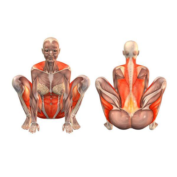 Easy crow pose - Kakasana - Yoga Poses | YOGA.com