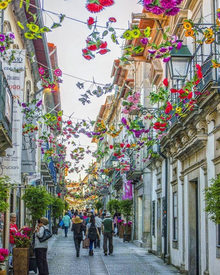 Streets decorated with colourful flowers, Viana do Castelo, Minho, Northern Portugal