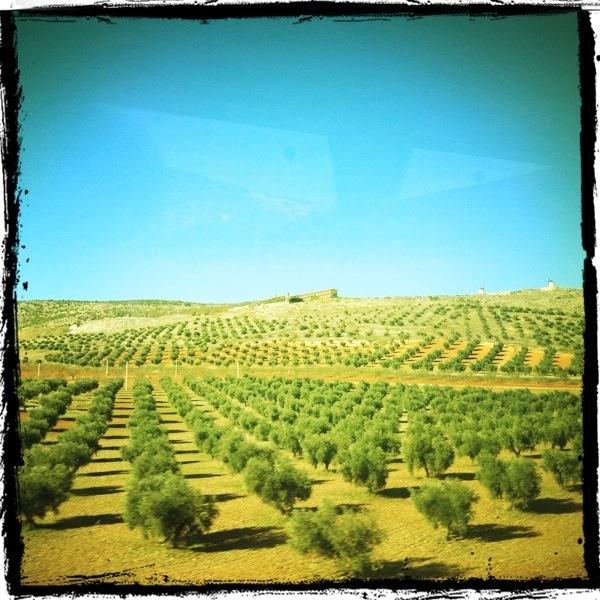 Toledo to Granada route, Spain