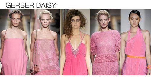 Top color. Womens Spring 2012 trend report, gerber daisy