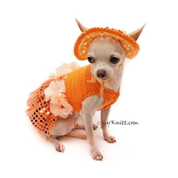 Bling - Bling Orange Dog Dress Crochet Summer Hat, Unique Chihuahua ...
