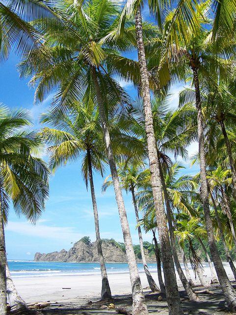#Carrillo #Beach, Nicoya Peninsula, #CostaRica. One of many gorgeous beaches in Costa Rica.