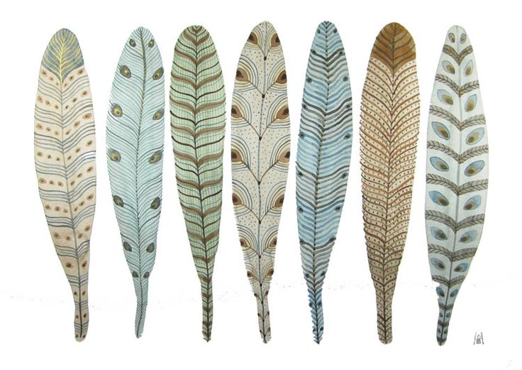 .: Inspiration, Pattern, Art, Illustration, Feathers, Fanciful Feather