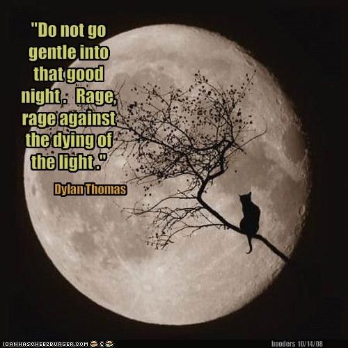 Do Not Go Gently Into That Night Rage Rage Against Your: Pin By Diane Jones On BEST Quotes & Sentiments