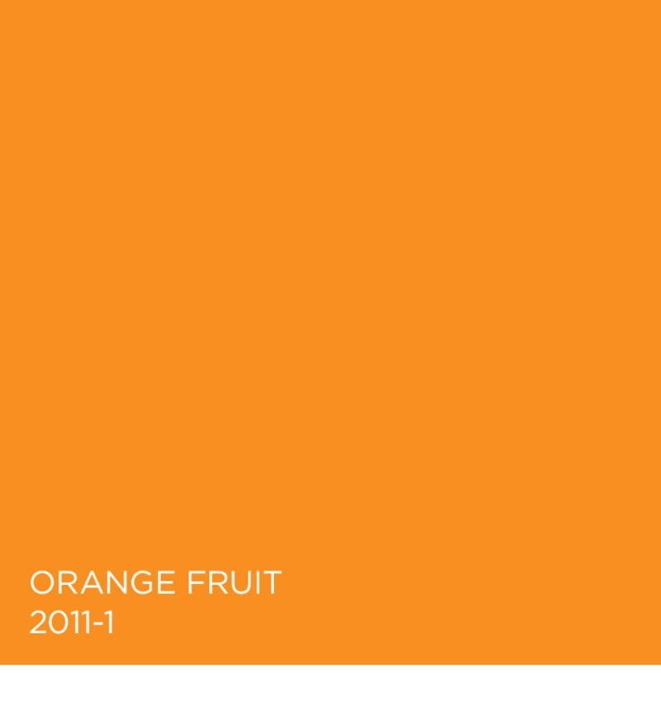 orange fruit 2011 1 colors in focus orange pinterest orange. Black Bedroom Furniture Sets. Home Design Ideas