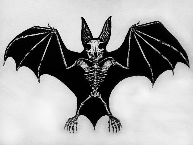 Skeleton Bat Dark ART EVIL Pinterest Bar Batman