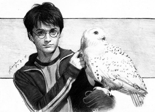 """*Pencil Sketch - """"Harry Potter and Hedwig"""" by FrankGo"""