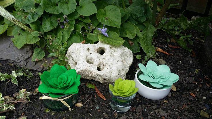 Felt succulents (1) by ThinkSleepy on Etsy